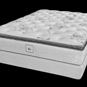 DreamStar Ortho Deluxe Mattress -0