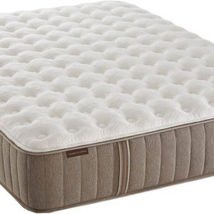 Embody by Sealy - Prophecy Memory Foam Mattresses-0